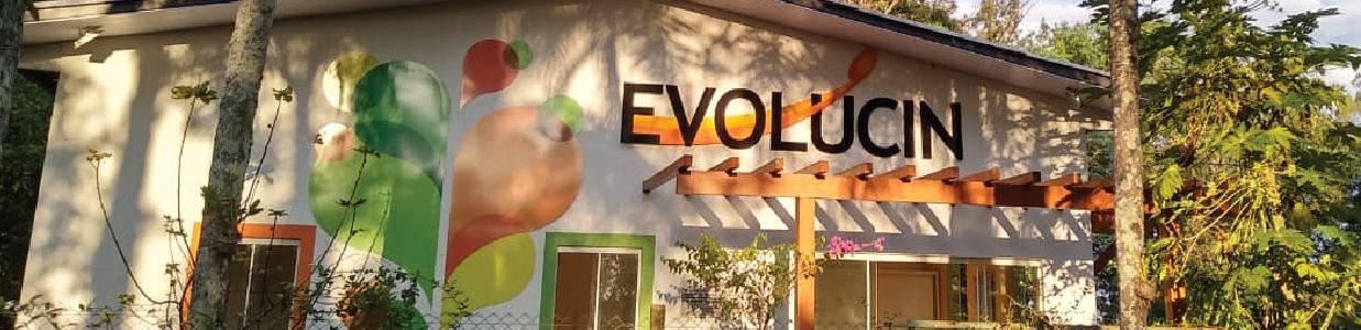 Evolucin